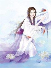 瓊瑤圣圖小說