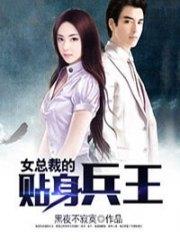 女总裁的贴身兵王陆天龙在线观看-陆天龙苏凌月的小说