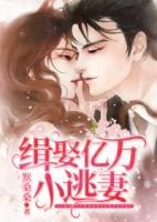 《缉娶亿万小逃妻小说》完整@全文免费阅读